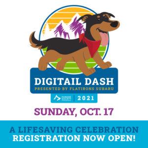 HSBV Digitail Dash 2021